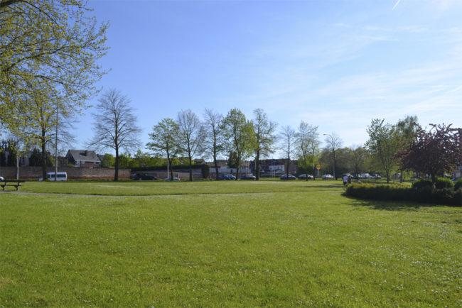 Tiense Vierkante Eters - Prairietuin - AST77 - Peter Van Impe